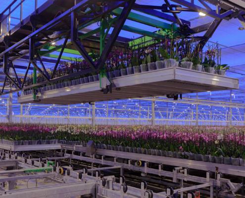 AgriTech innovatie tuinbouw
