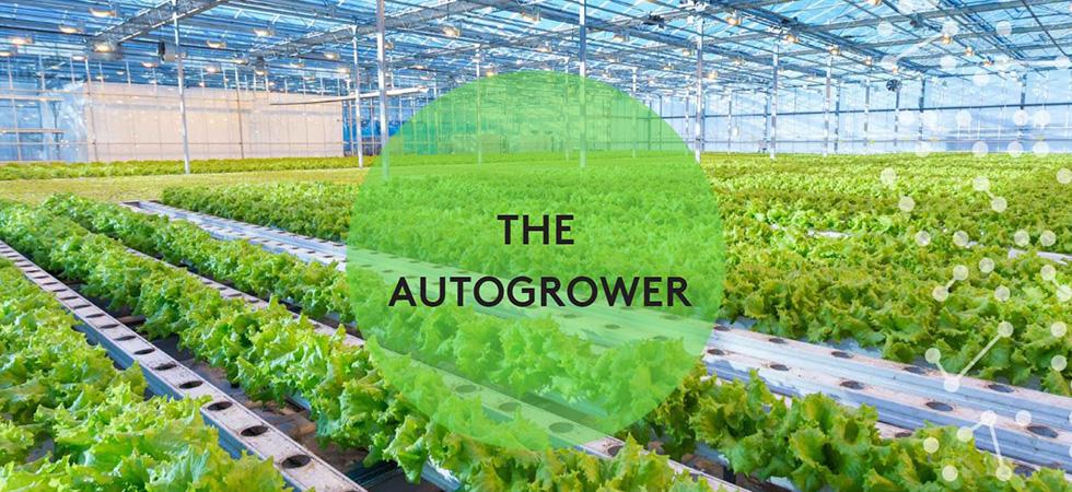 Nieuw Zeelands tuinbouwbedrijf Autogrow zet juist nu stap naar Europa