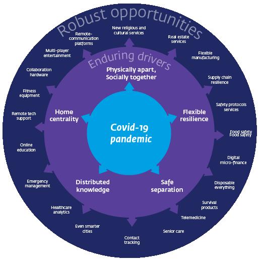 Figuur 5. Vijf ontwikkelingen leiden tot kansen voor ondernemers (Isenberg en Schultz, 2020).