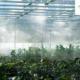 projecten uit de tuinbouw en tech-leveranciers vragen AgriTech voucher aan