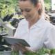 Vouchers voor de tuinbouw en techleveranciers